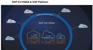 Plataforma SAP S/4Hana